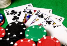 gambling seoni jua jungle news