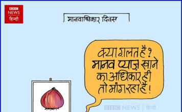 CARTOON-ON-ONION