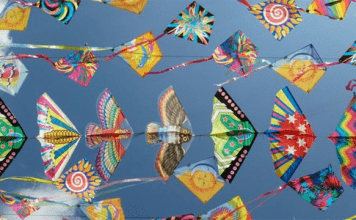 kite-in-makar-sankranti-2020